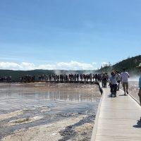 Boardwalk around the Grand Prismatic Spring