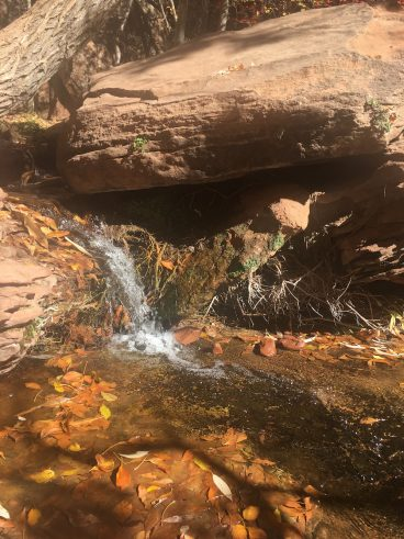 Even in the fall the small waterfalls run.